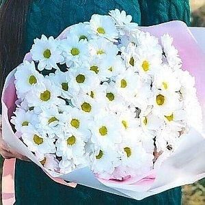 Букет из 51 белой ромашки в оформлении, Lotus Flower