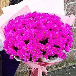 Букет из 201 розовой ромашки в оформлении, Lotus Flower