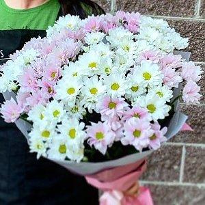 Букет из 101 белой и розовой ромашки, Lotus Flower