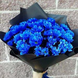 Букет из 51 синей ромашки в оформлении, Lotus Flower