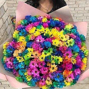 Букет из 301 радужной ромашки в оформлении, Lotus Flower
