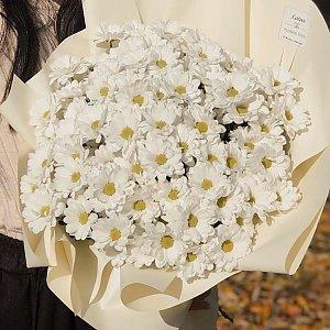 15 веток хризантем в оформлении, Lotus Flower