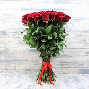 Роза Фридом 90см, Времена Года