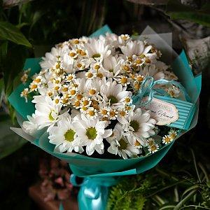 Букет из ромашек и хризантем, FRESH FLOWERS