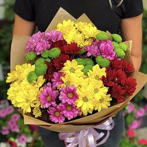 Букет из хризантем микс, FRESH FLOWERS