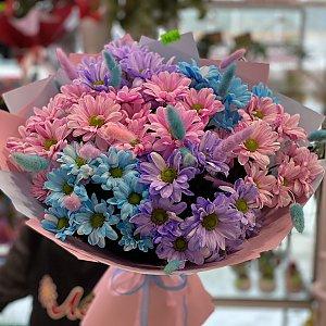 Букет из разноцветных ромашковых хризантем, Лора